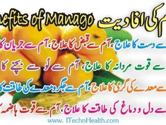 Aam Ke Faide in Urdu