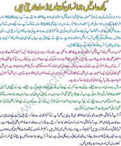 Habits That Make a Man Older Before Time In Urdu