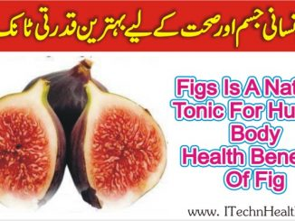 Health Benefits Of Figs Tonic