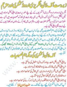 Urdu_to_Urdu_Offline_Lughat