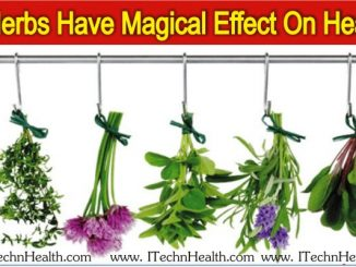 5 Herbs Have Magical Effective On Health, You Do Not Know