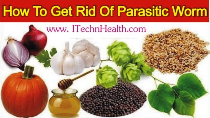 How To Get Rid Of All Types Of Parasitic Worms In Humans Body