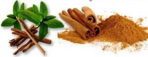 Advantage and Disadvantage of Cinnamon