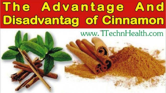 The Advantage and Disadvantage of Cinnamon