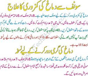 saunf benefits for increase memeory power in urdu