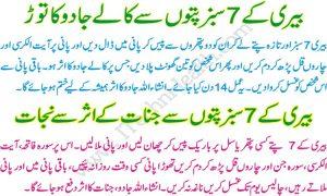 Jado Ka ilaj Quran Pak Se