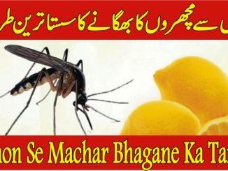 Get Rid Masqito With Lemon Se Machar Bhagane Ka Tarika In Urdu