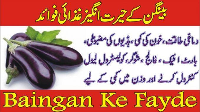 Baingan Ke Fayde Aur Nuqsanat In Urdu- Benefits of Brinjal