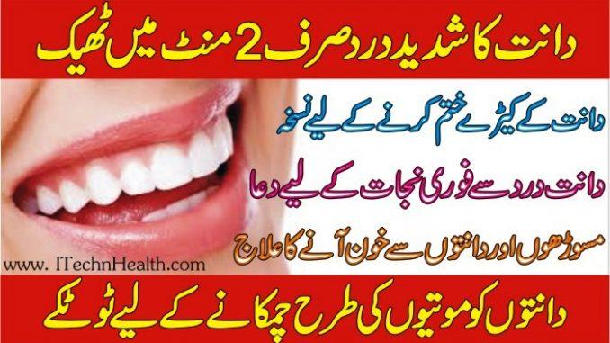 Dant Dard Ka Fori Ilaj, Dant Main Keera Ka Ilaj In Urdu