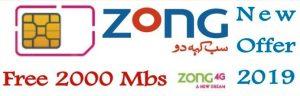 Zong New SIM Offer 2019