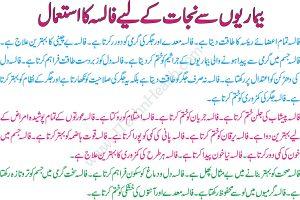 Benefits of Falsa