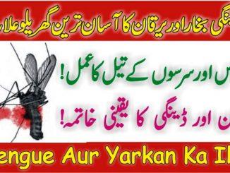 Dengue Aur Yarkan Ka Ilaj