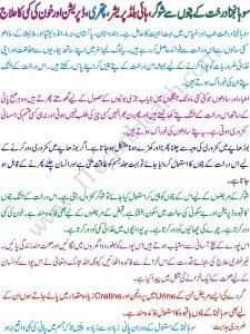 Health Benefits of Sohanjna Tree In Urdu