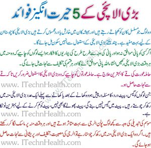 Elaichi Benefits And Side Effects In Urdu