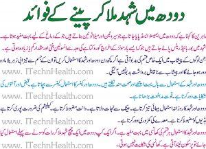 Shaid Aur Dood K Faidy, Benefits of Use of Honey With Milk