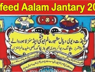 Mufeed Aalam Jantri 2020 PDF Free Download