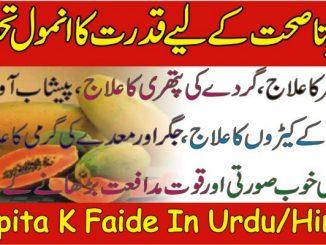 Papita Benefits in Urdu Hindi
