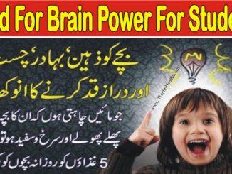 Brain Development Food for Students