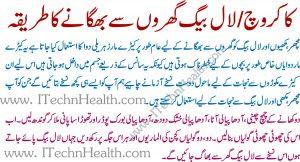 Totkay For Cockroaches In Urdu