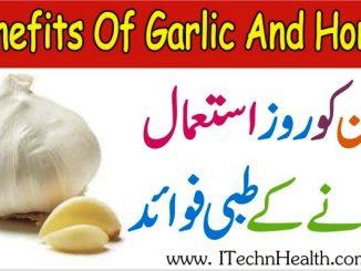Benefits Of Garlic And Honey, Lahsun Ke Fayde, Garlic And Cholesterol