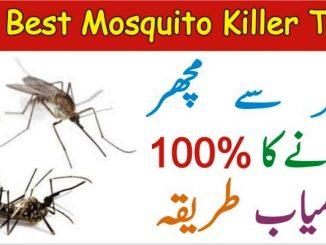Machar Bhagane Ka Tarika, 03 Best Mosquito Killer Tips