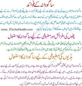 Benefits Of Sabudana In Urdu