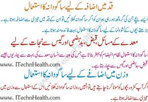 Sabudana K Fawaid In Urdu