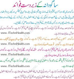 Sabudana Ke Fayde In Urdu